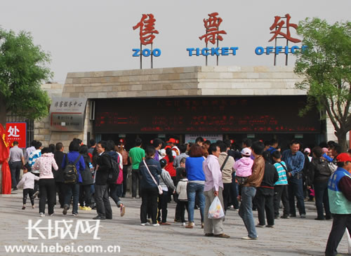 石家庄市动物园售票处排起长龙