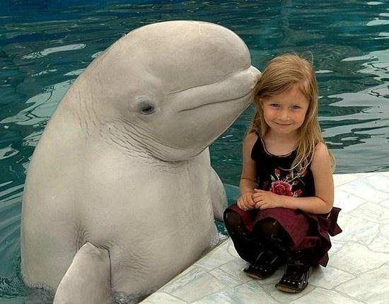 孩子与动物:世界上最美好的画面