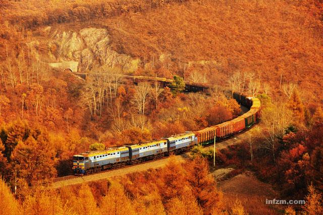 中国 哈尔滨 西伯利亚/俄罗斯的3TE10M机车牵引原木大列驶入中国,此场景颇有...