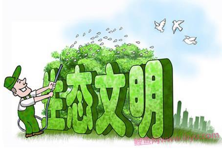 绿水青山就是金山银山手抄报(共5篇)