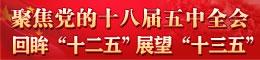 """聚焦党的十八届五中全会 回眸""""十二五"""" 展望""""十三五"""""""