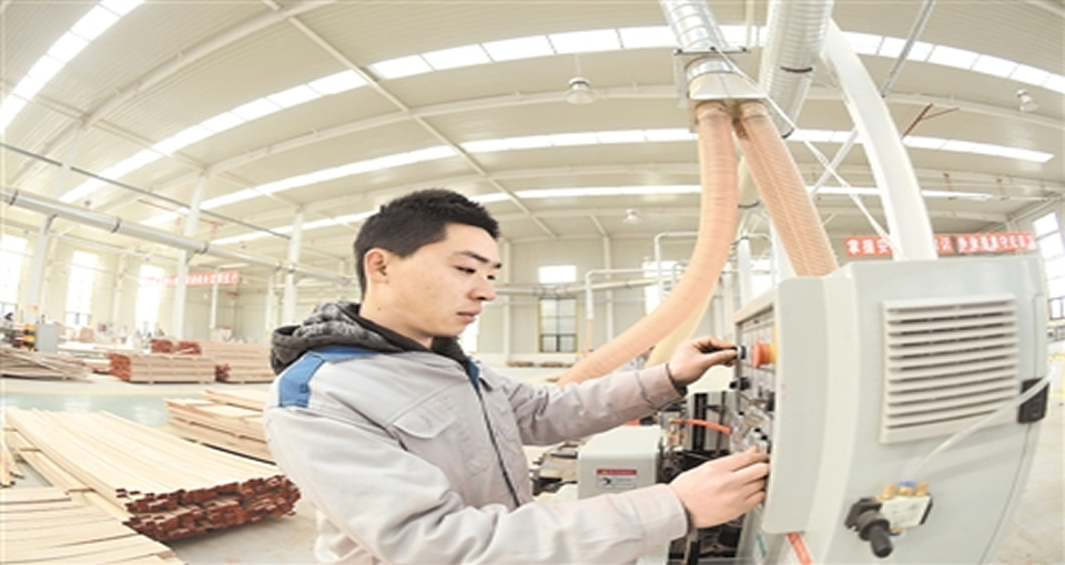 宁晋:优化营商环境 吸引回乡创业