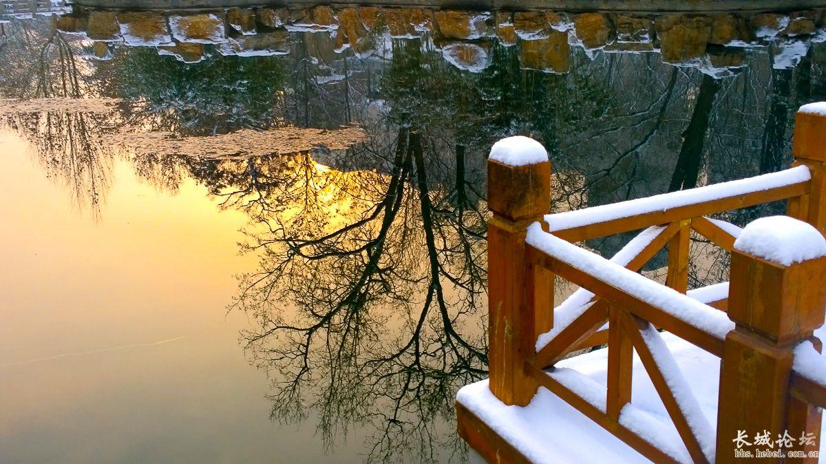 今晨公园看雪