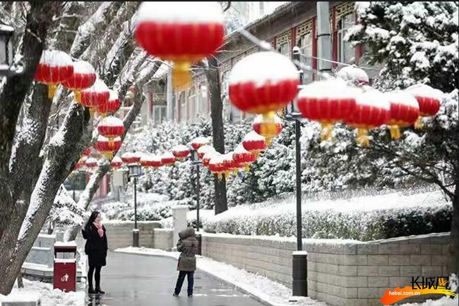 2017第一场春雪如约而至 网友竞晒雪后衡水
