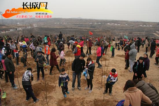 国家植树造林号召,唤起全民环境保护意识,由邯郸市绿化委员会办公室