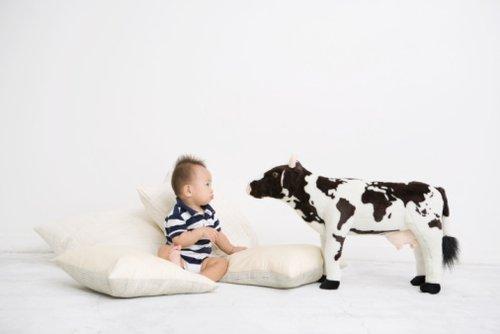 奶粉进口数量单月增幅首次下降