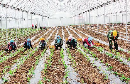康保县五年经济社会发展回眸与展望