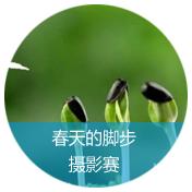 """【守护蓝天 我们在行动】活动二 """"春天的脚步"""" 摄影征集大赛"""