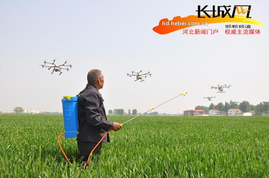 临漳:无人机飞防小麦3万亩 科技惠农提质增效