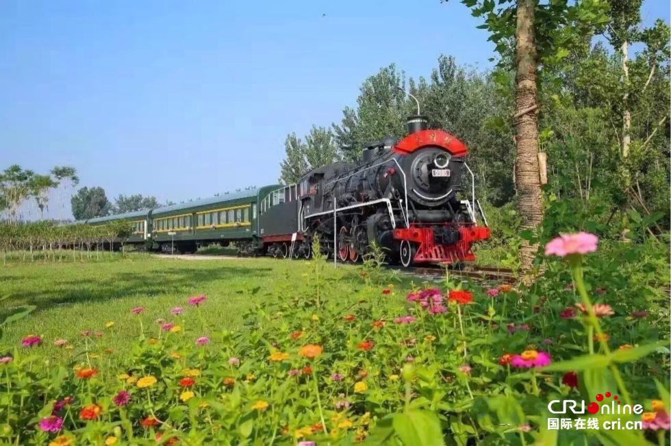 生态镇大王古庄镇,是一个集农业旅游,浪漫田园为一体的休闲农业观光园图片