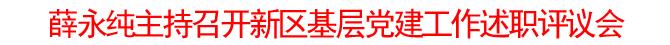 薛永纯主持召开新区基层党建工作述职评议会
