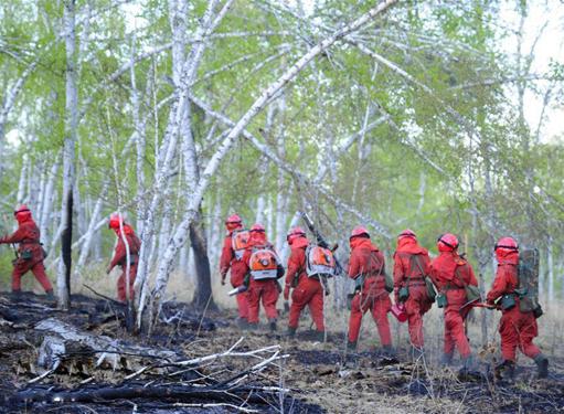 内蒙古陈巴尔虎旗那吉林场森林火灾火场烟点全部扑灭