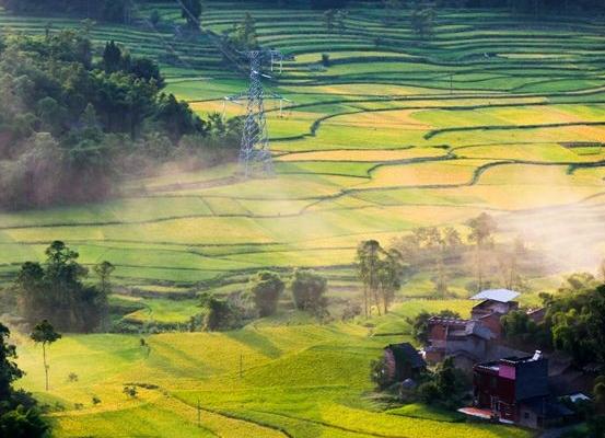 今年河北省将建4398个美丽庭院重点村