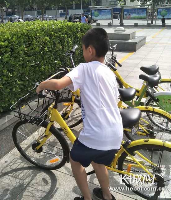 石家庄市小学街桌椅开展暑假创城活动实践小学生草场实木图片