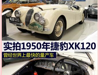 实拍1950年捷豹XK120