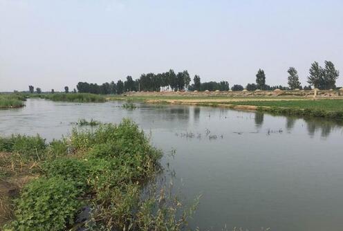 安平县打响水环境治理生态保护攻坚战!