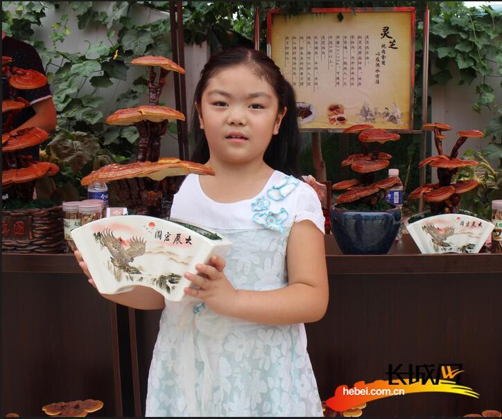 衡水举行第三届灵芝文化采摘节