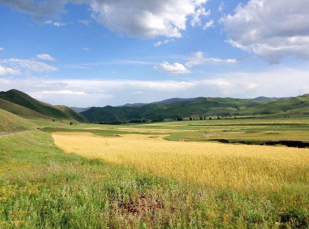 外国人眼中的内蒙古成功之路