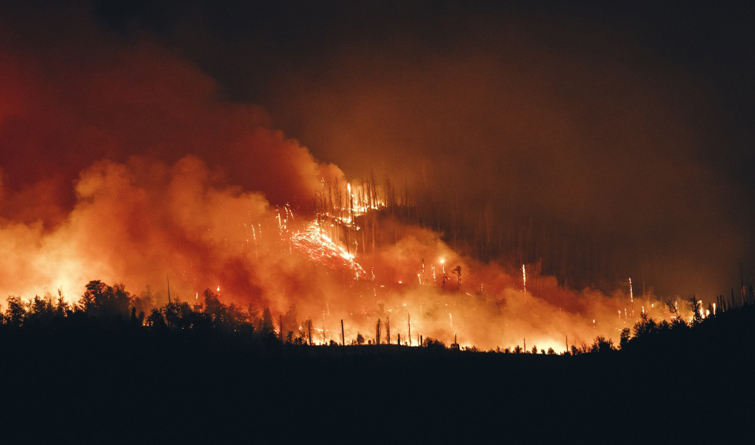 格鲁吉亚中部山火仍在蔓延