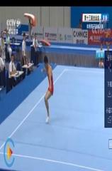 [全运会]夺金时刻:体操男子团体赛贵州队夺冠