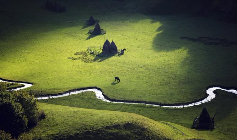 《国家地理》自然摄影佳作 动人心魄之美