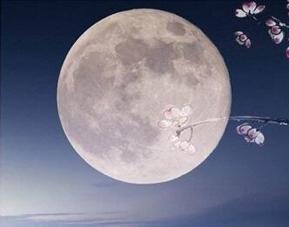 中秋节,该怎样赏月?