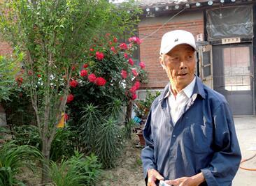河北滦南鲐背老人打造幸福小院 为13位烈士建陵园