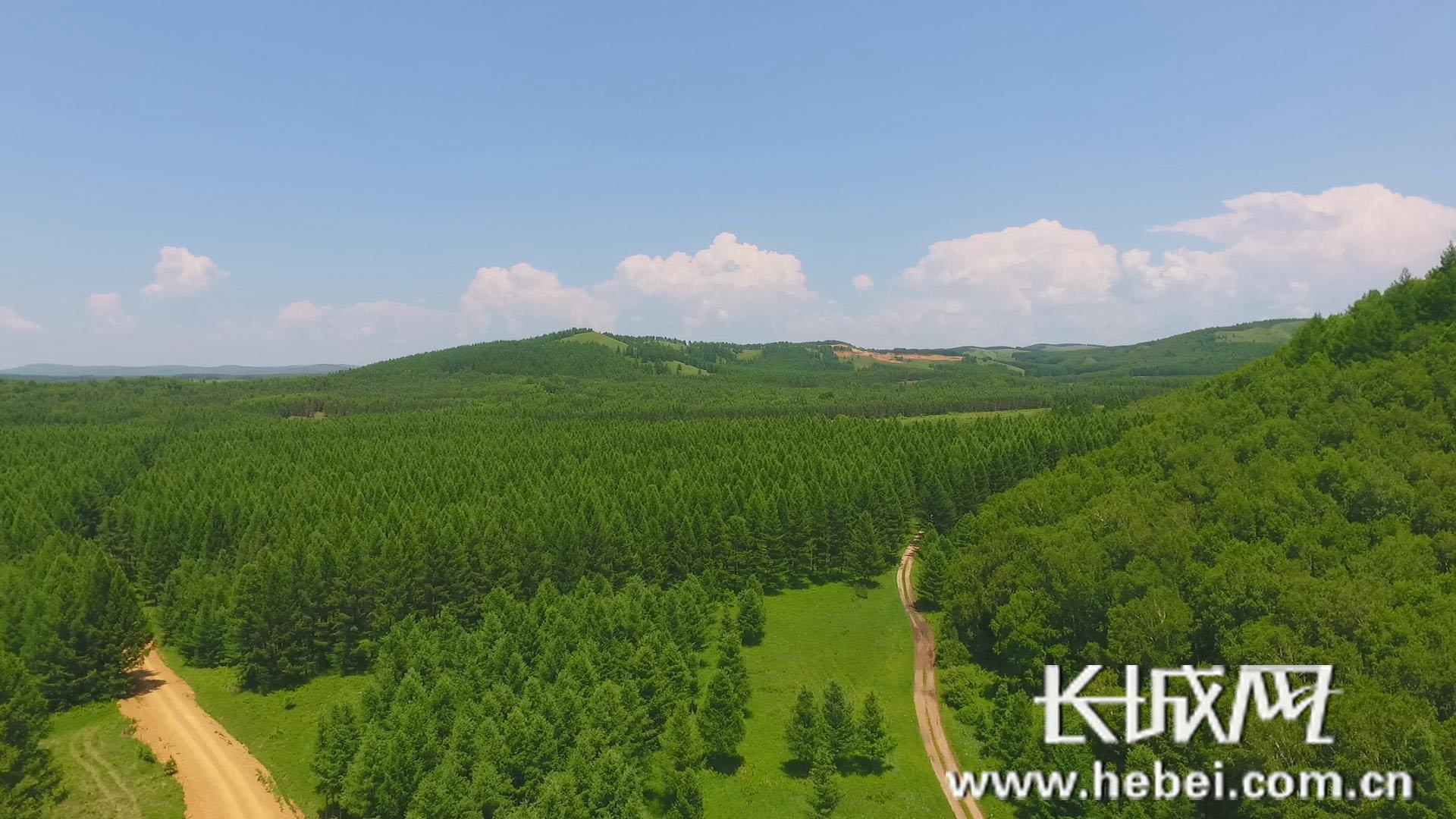 河北省森林面积已达9000万亩森林覆盖率32%