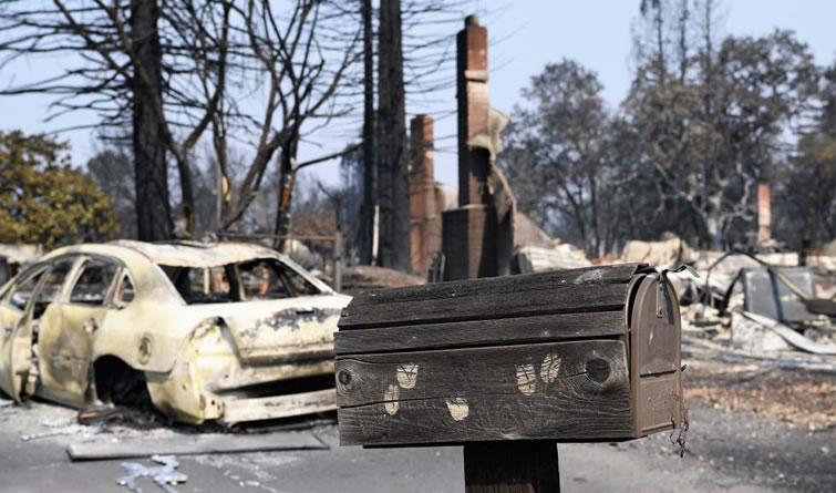 美国加州北部森林大火已致40人死亡