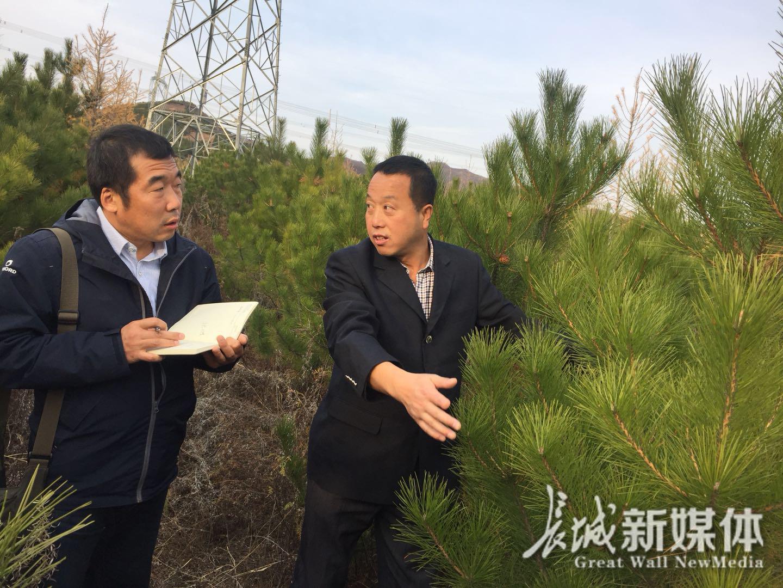 【直通党代会】隆化80万亩荒山推广森茂经验 打造富民
