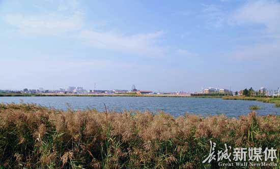 黄骅市地坤湖公园。