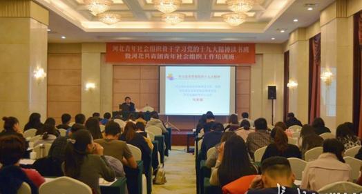 河北青年社会组织十九大精神读书班