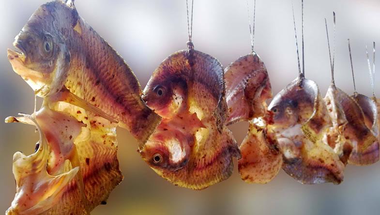咸鱼被列致癌物是一种生活习惯预警