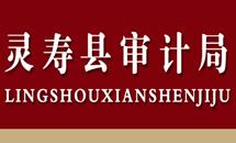 【专题】灵寿县审计局