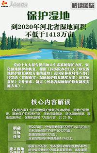【解读图鉴】《河北省湿地保护修复制度实施方案》政策解读