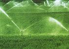 巨鹿实施地表水高效节水灌溉项目