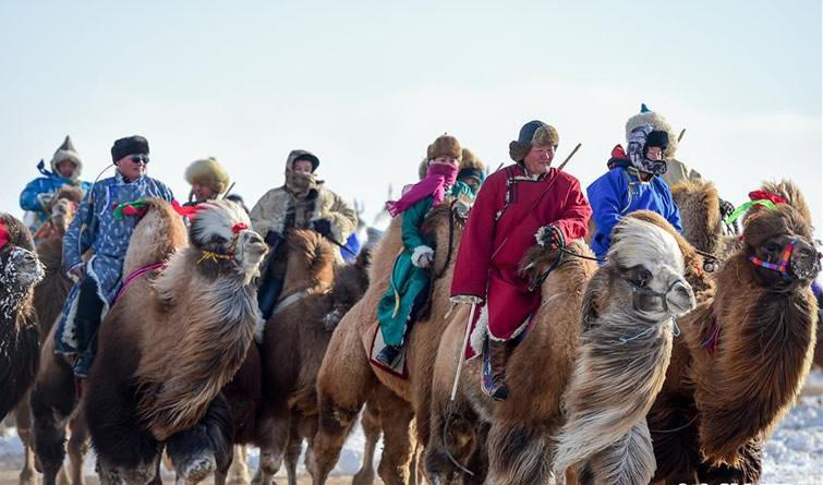 银色冰雪那达慕 展示草原马文化
