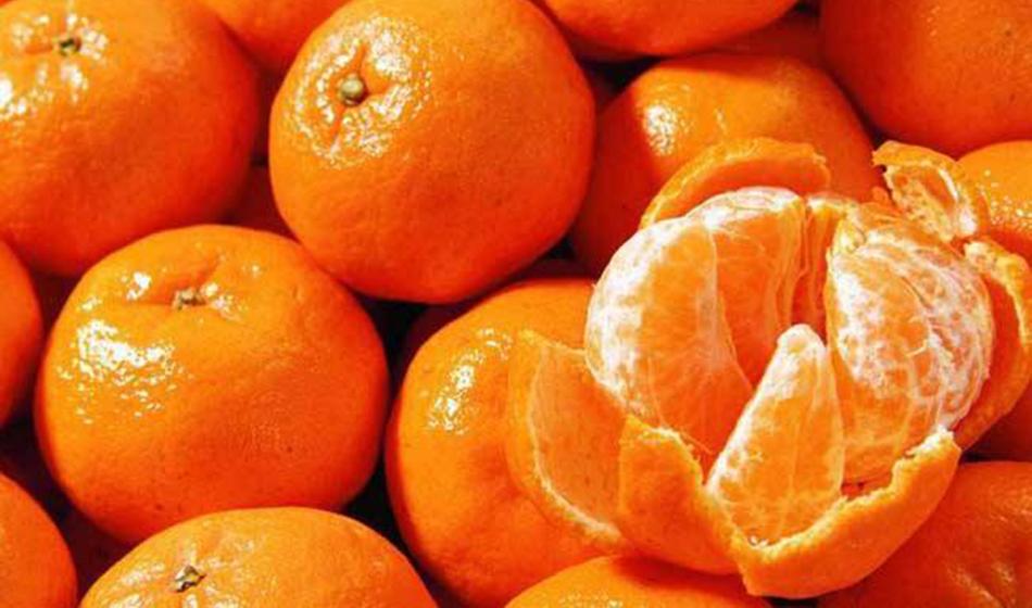 大寒养生:四大温补食物+四种疗效水果
