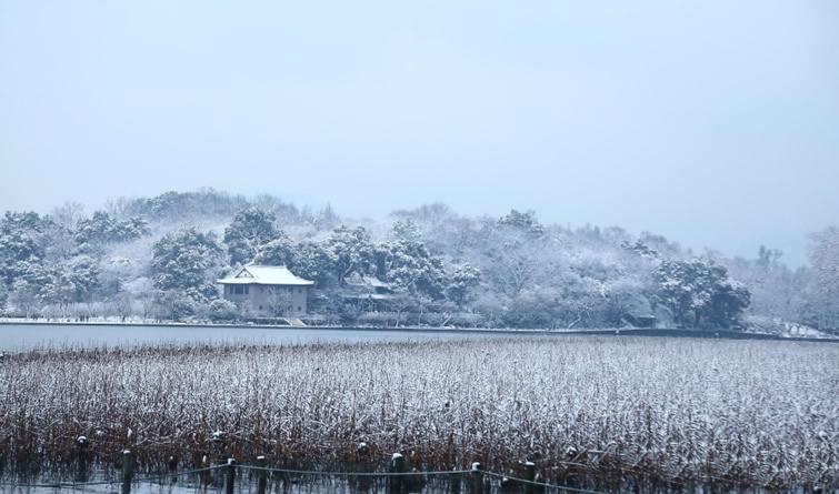 一夜风雪 杭州西湖美如画