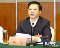 省人大代表、沧州市委书记杨慧