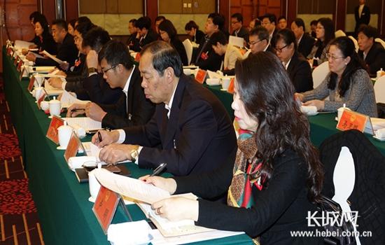 各代表团分组审议省政府工作报告
