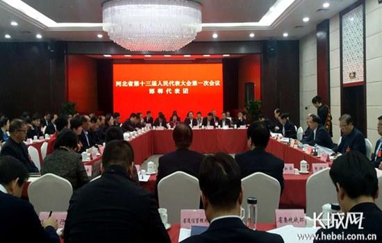 河北省十三届人大一次会议各代表团分组审议省政府工作报告
