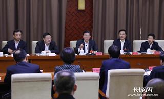 王东峰参加沧州代表团审议