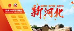 河北省十三届人大一次会议闭幕