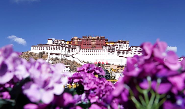 冬游西藏 布达拉宫等景区免费开放