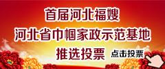 首届河北福嫂巾帼家政示范基地投票