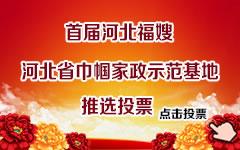 河北福嫂推选投票