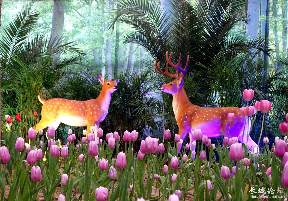 植物园看花展 百花相伴过大年