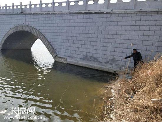 饶阳县沱阳公园四保安合力勇救跳水女子图片