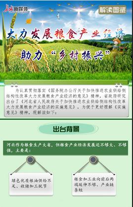 """【解读图鉴】大力发展粮食产业经济 助力""""乡村振兴"""""""